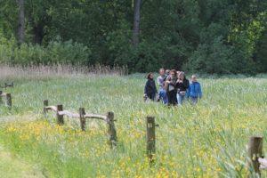 loop met een rondleiding over de Koeienweide