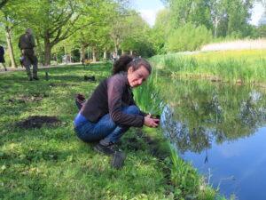 natuuroevers Vondelpark