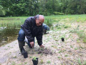 Natuuroevers Amsterdamse Bos